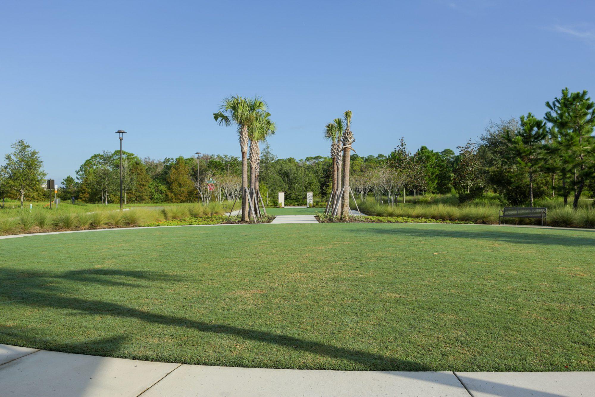 Laureate Park Community Garden - Reymont Street 2
