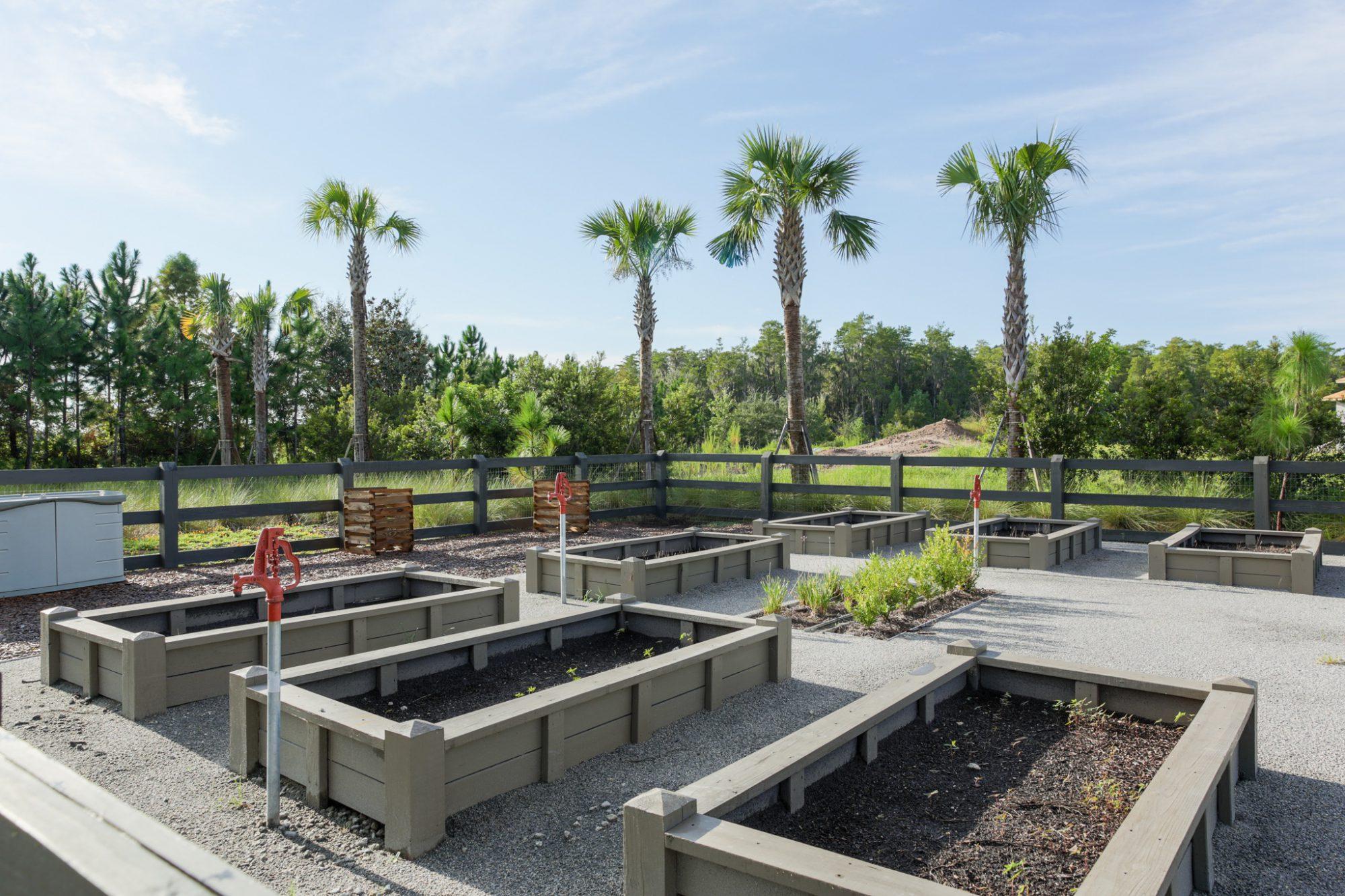 Laureate Park Community Garden - Reymont Street 1
