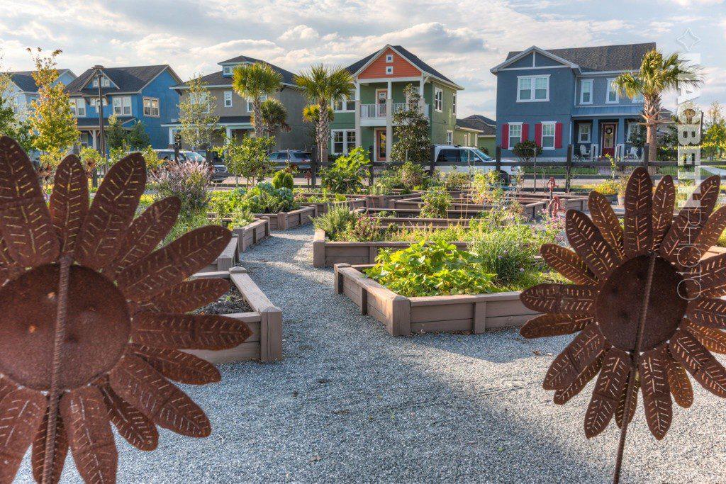 Laureate Park Community Garden - Laureate Blvd 2