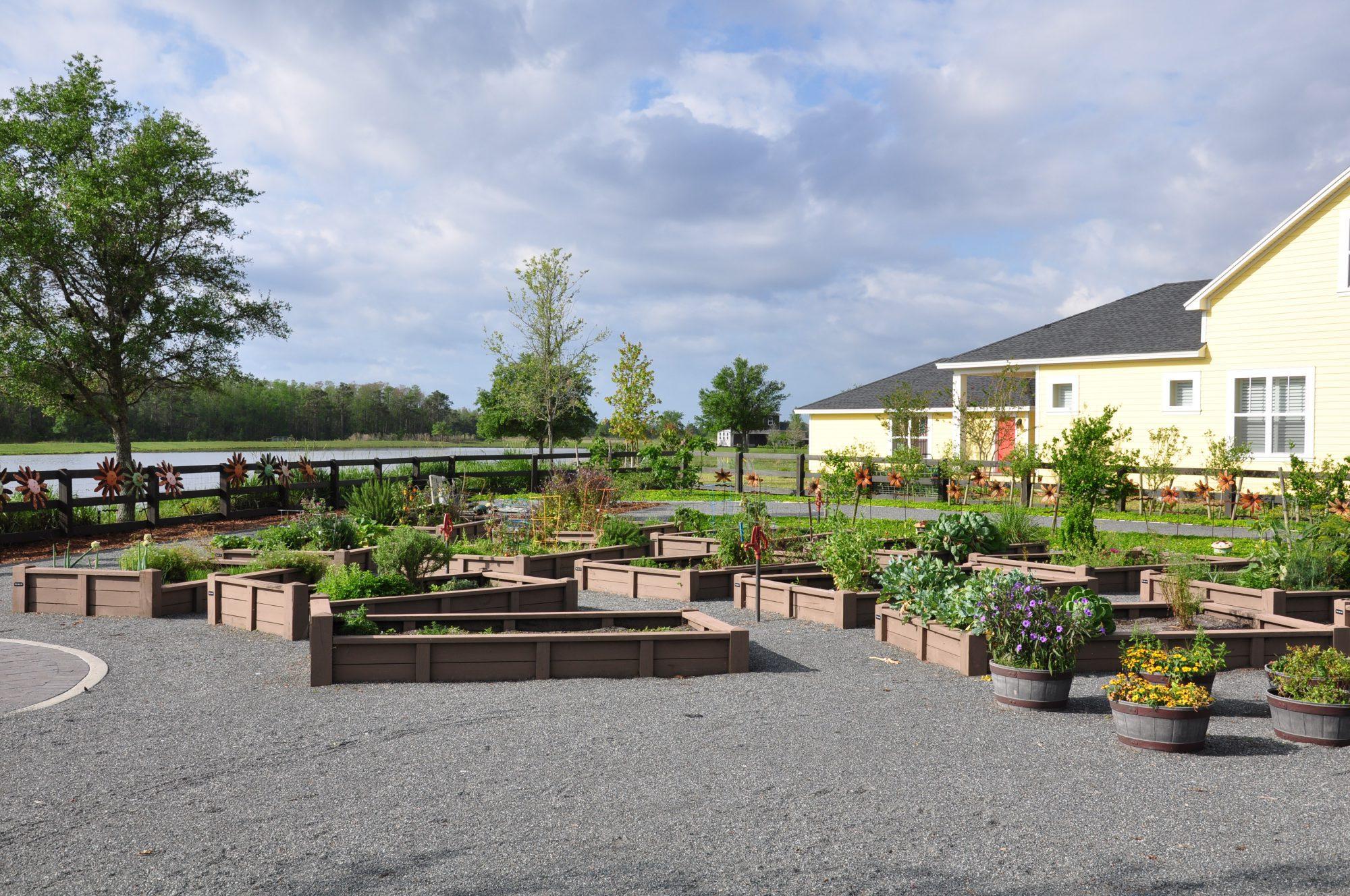 Laureate Park Community Garden - Laureate Blvd 3